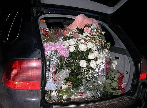 Sevgiliye Bahçeden Koparılan çiçek Vermek Uludağ Sözlük